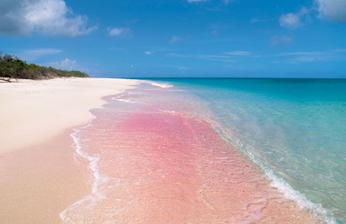 Pink Sand Beach Puerto Rico The Best Beaches In World