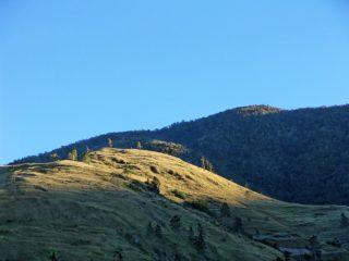 Blue mountains Jamaica